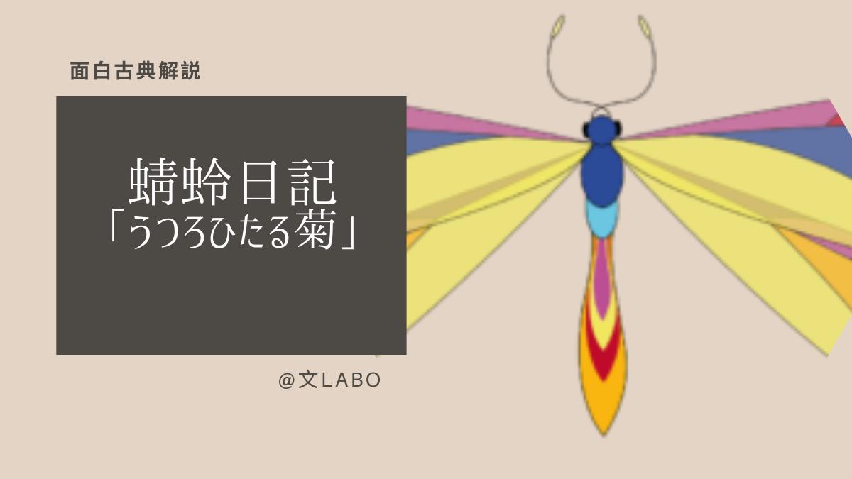 蜻蛉 日記 うつろ ひたる 菊